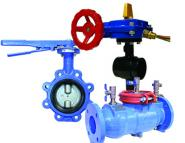 Valves & Backflow